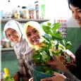 8 hal positif kampug inggris